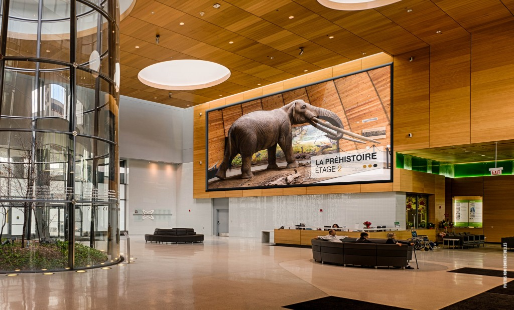 Les dalles en P5, vous permettent la réalisation d'immenses murs d'images écrans géants pour Musée, Loisirs & Sites Touristiques